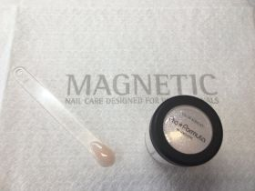 Magnetic ACRYL Sparkling Nudes SILVER 12g